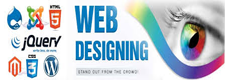 Web Design Services Pune