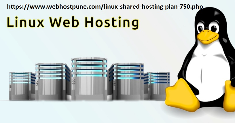 Linux Shared Web Hosting in 750 rs